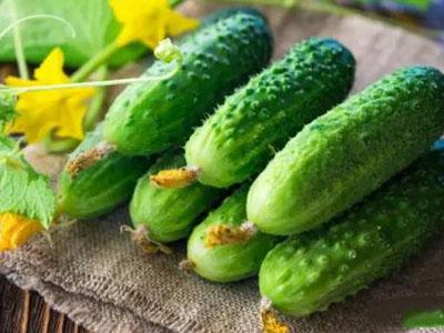 糖尿病究竟该怎样吃黄瓜?